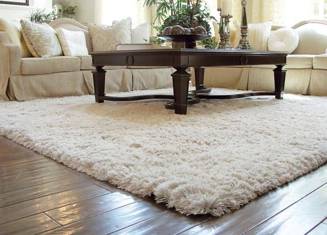 clean an area rug using a steam cleaner