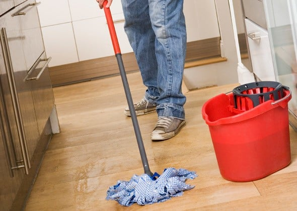 How To Get Rid Of Pet Odor From Your House Best Homely Tips