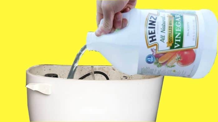 Using Vinegar to Clean A Toilet Bowl Ring