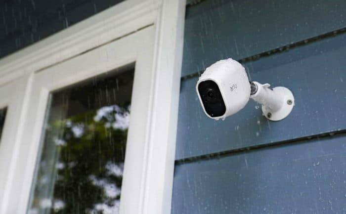 backyards cameras