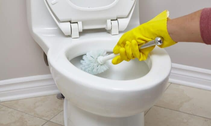 How to Remove Poop Stains from your Toilet Bowl